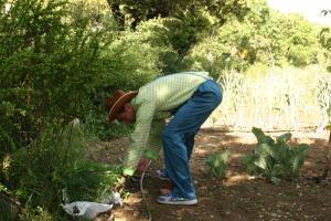 Huerto ecológico - Zafarrancho