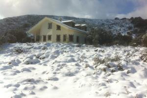 La finca nevada - Zafarrancho